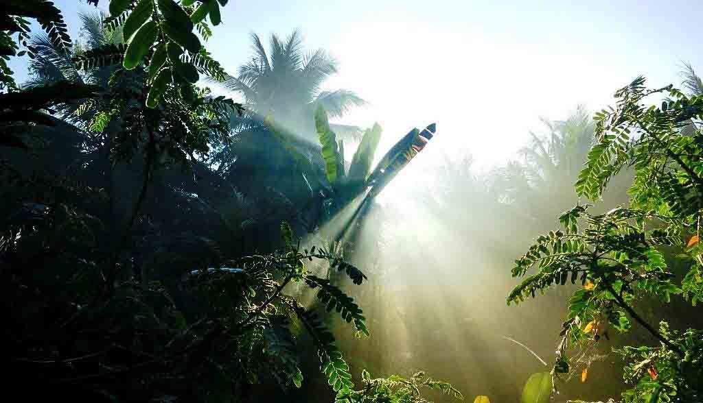 Vietnam Reisen - Morgensonne vor Ihrem Homestay (Originalbild Mirango Travel)
