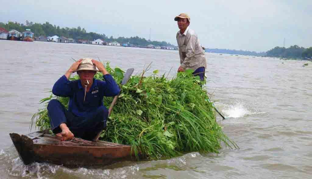 Vietnam Reisen - Kleintransport auf dem Bassac-River bei Chau Doc (Originalbild Mirango Travel)