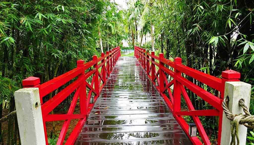 Vietnam Reisen - Red Bridge Kochschule in der Nähe von Hoi An (Originalbild Mirango Travel)