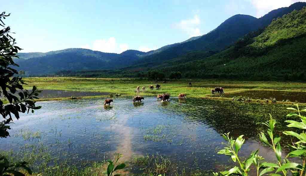 Vietnam Reisen - Reizvolle Landschaft zwischen Hoi An und Hue (Originalbild Mirango Travel)