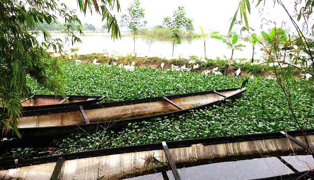 Vietnam Reisen - Boote in der Umgebung von Hue (Originalbild Mirango Travel)