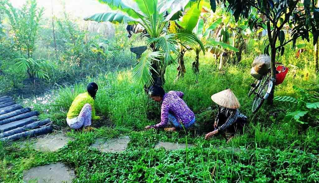 Vietnam Reisen - Die Familie verbessert den Zugang zu Ihrem Homestay (Originalbild Mirango Travel)