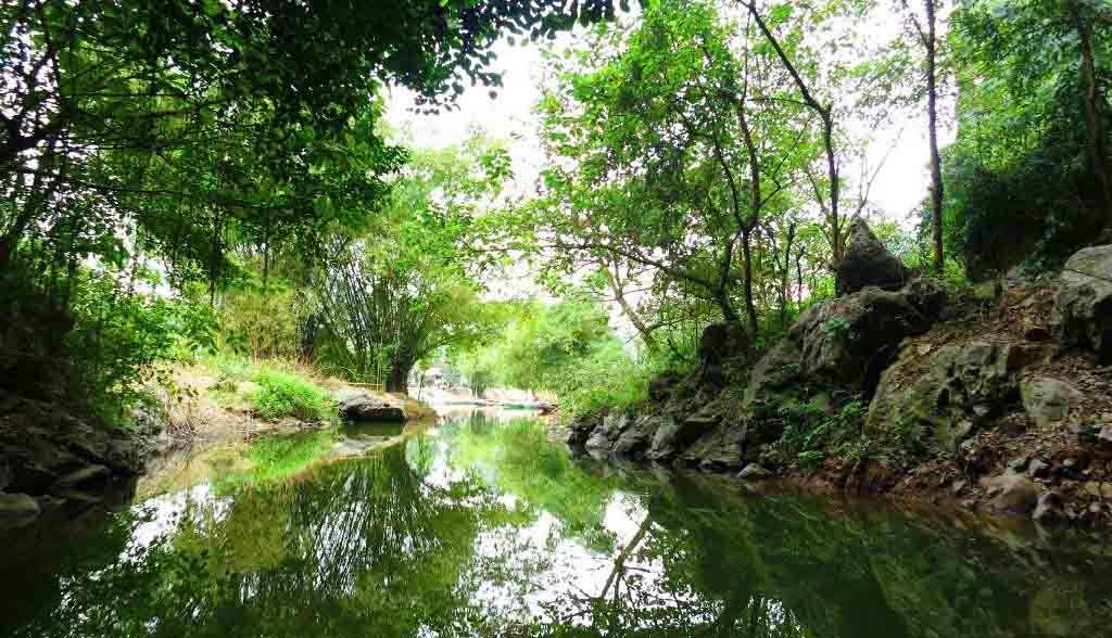 Vietnam Reisen - Flussfahrt durch Täler, Höhlen und Wälder in Tam Coc (Originalbild Mirango Travel)